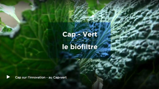 ARTE WEBSERIE 6 – Le Cap-Vert